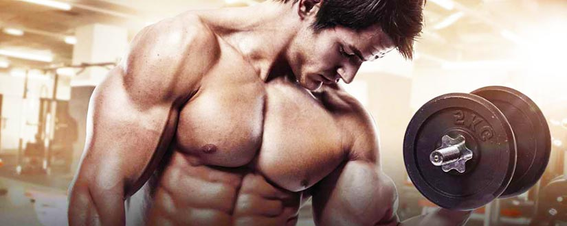 16 Bodybuilding Tips for Beginners