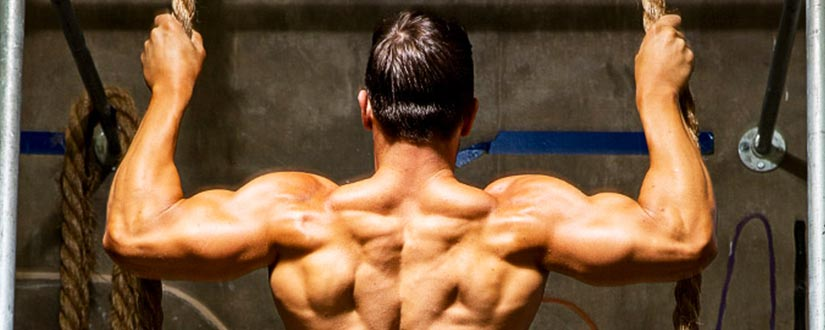Ten best rear deltoid drills you can do to get a beautiful figure
