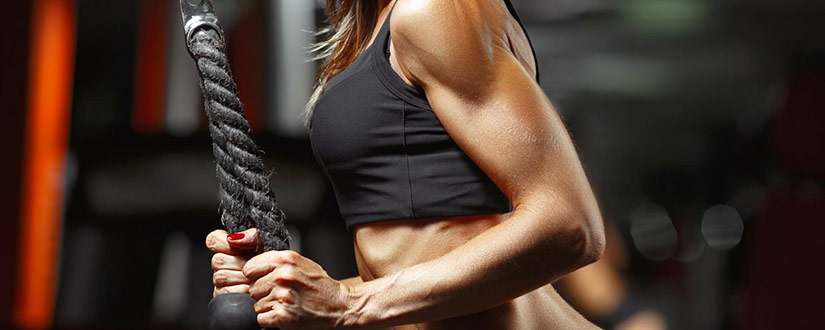 Do You Get Lost When It Comes to Triceps Work Out? Read on for Guidelines description