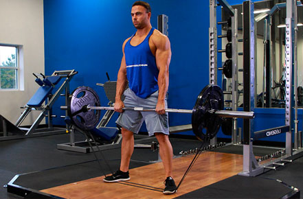 Banded Deadlifts