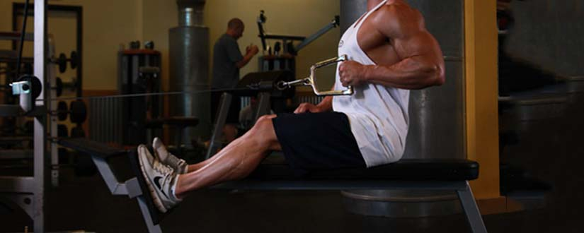 Best Seated Cable Row Alternative Exercises You Must Try