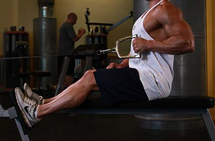seated cable row substitute excercises